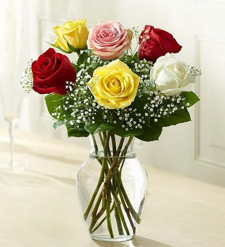 Love\'s Embrace™ Roses - Assorted
