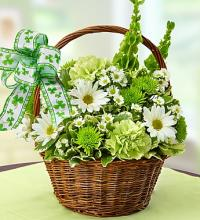 St. Patrick's Day Flower Basket